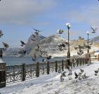 Сезонное жилье в Одессе